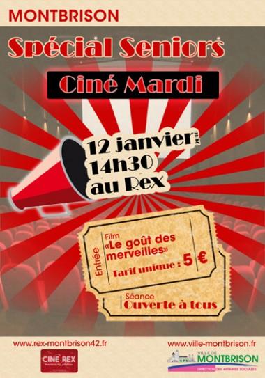cine mardi visuel 12 janvier 2016