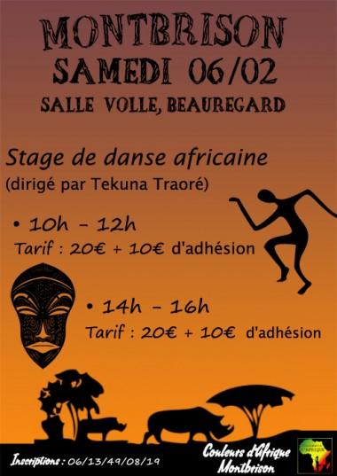 fevrier stage danse