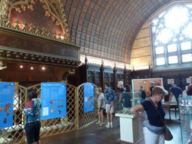 Salle héraldique de la Diana