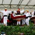 Folklore animations musicales.